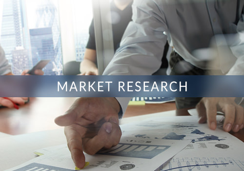 Skipping-Stone-Services-Market-Research